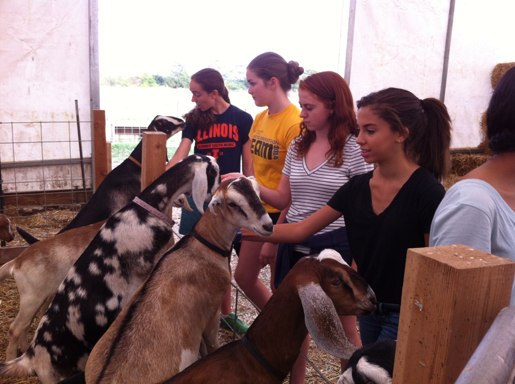 Annemarie Michael, Callie Bruce, Zina Dolan and Rima Rebei conduct 'pre-interviews' with goats at Prairie Fruits Farm, near Urbana, Illinois. (Photo by Janet Morford)