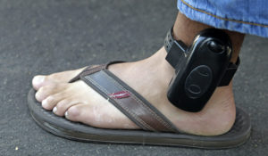 In this Aug. 26, 2010 file photo, a parolee wears an ankle bracelet while being arrested by a parole agent outside his home in Los Angeles.  (AP Photo/Jae C. Hong, File)
