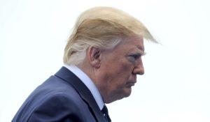 President Donald Trump (Photo: zz/KGC-03/STAR MAX)