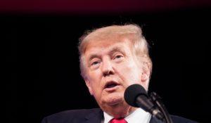 Former president Donald Trump. (AP Photo/LM Otero)